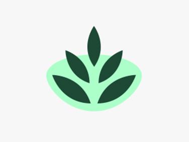 Simillimum - Koda Web Design Auckland