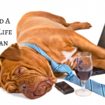 Work and Life Balance Is Important In Any Workplace